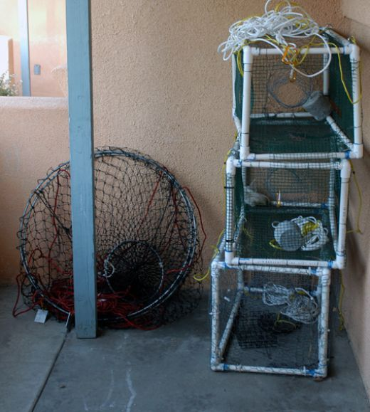 Build your own pvc crab lobster trap to be types of and for Fishing pole crab trap