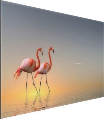 Alu Dibond Bild - Flamingo Love - Quer 2:3 50x75-22.00-PP-ADB-WH Jetzt bestellen unter: https://moebel.ladendirekt.de/dekoration/bilder-und-rahmen/bilder/?uid=ec61f371-192e-564f-a588-b09af1b739d5&utm_source=pinterest&utm_medium=pin&utm_campaign=boards #heim #bilder #rahmen #dekoration