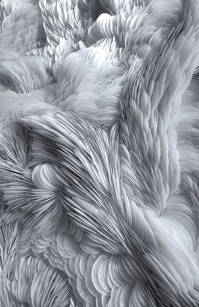 Rowan Mersh | Placuna Phoenix (detail), 2014