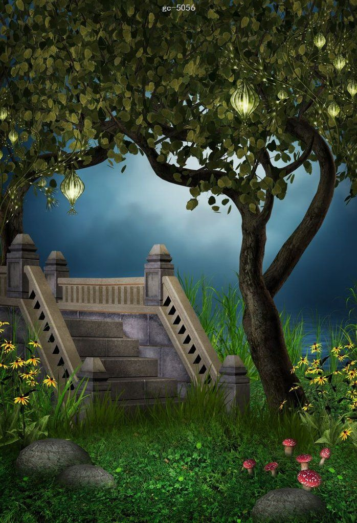 Fairy Tale Bridge Forest Photo Background Studio Backdrop Dslr Background Images Photo Backgrounds Photo Background Images
