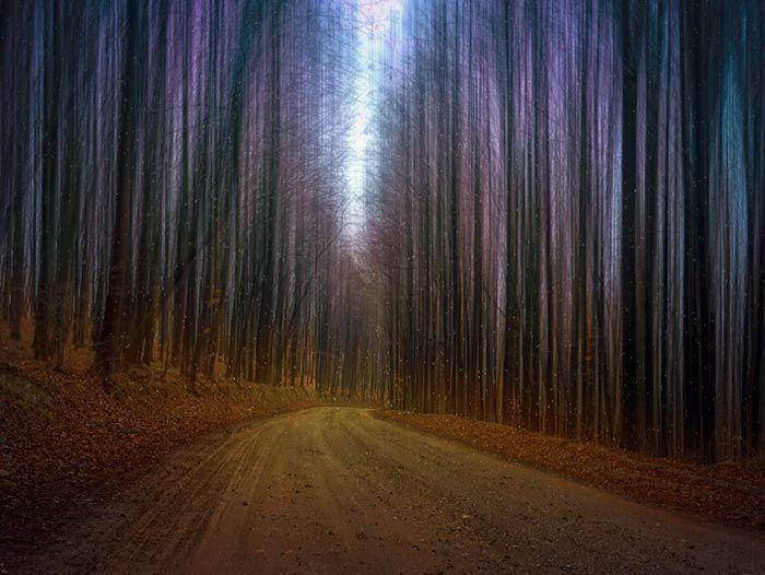 """Poezia zilei: """"Drum fără drum"""" – Lorena Craia"""