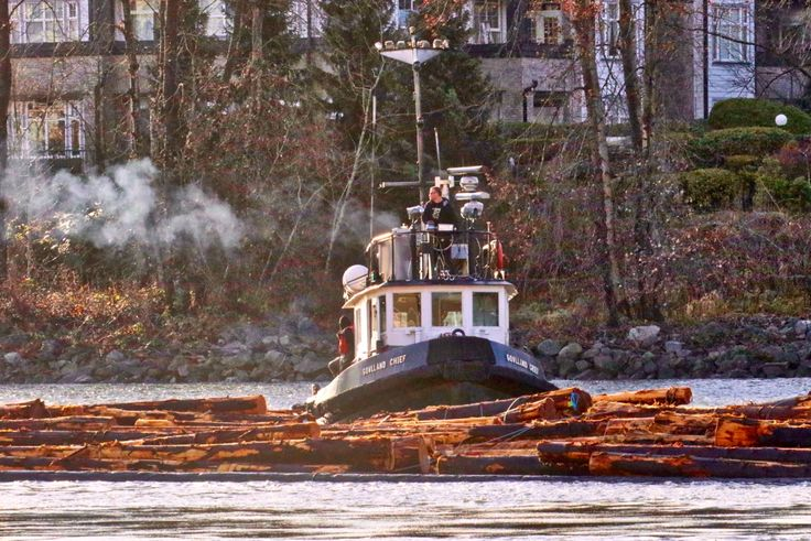 """Quadrant Towing's tugboat """"Gowlland Chief"""" guiding a log boom in the North Arm of the Fraser River. Click image to enlarge."""