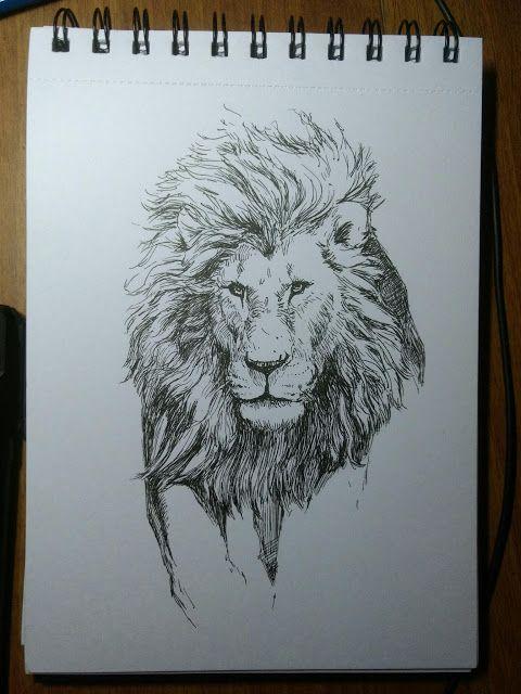 Sketch a day #14   Lions are addictive ...  2d african lion illustration inktober lion sketch