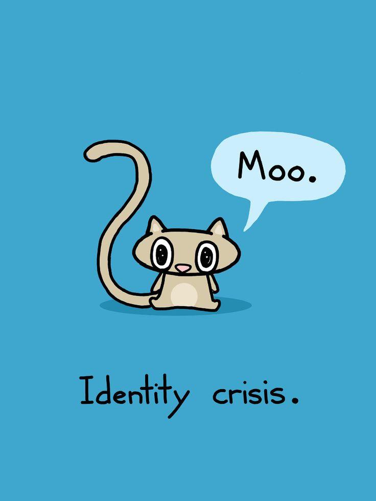 Identity crisis in little miss sunshine essay