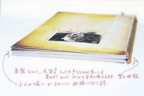 http://www.yaso-peyotl.com/archives/2014/04/costa_deva_book.html