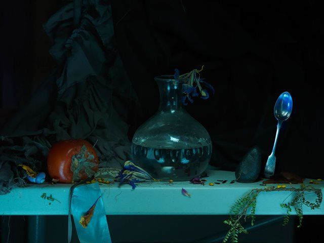 Fiona Pardington — Still Life with Mouldy Persimmon, Precarious Silver Spoon and Cameron Creek Water, from the Colin McCahon Residency 2013