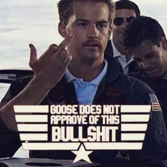 Goose disapproves, top gun meme