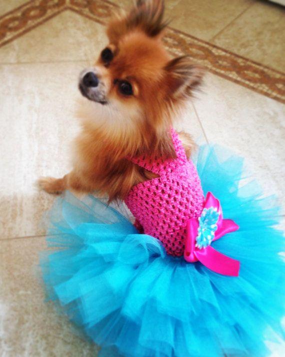 SPRING  Miami Style DOG TUTU Dress by JustForBella on Etsy, $55.00