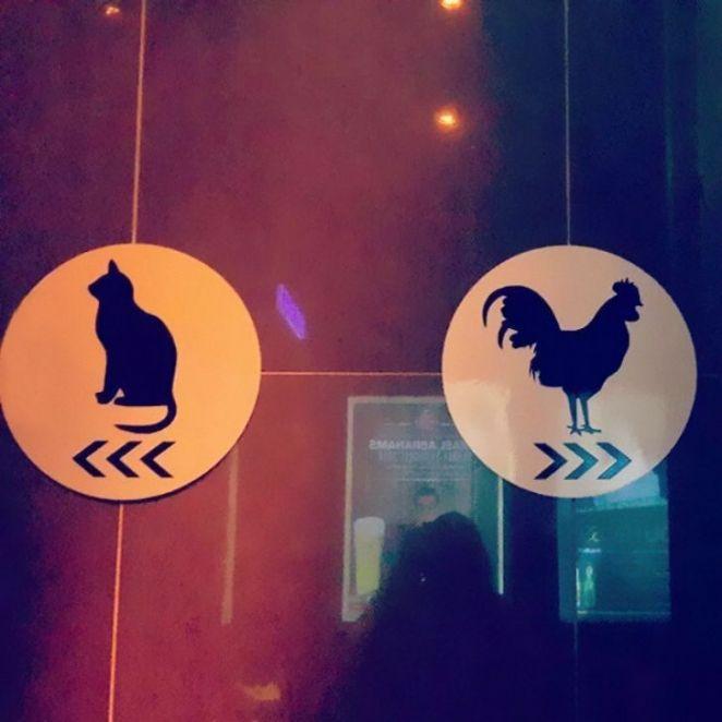 """Никаких больше стандартных """"Мэ"""" и """"Жо"""" - самые креативные туалетные знаки"""