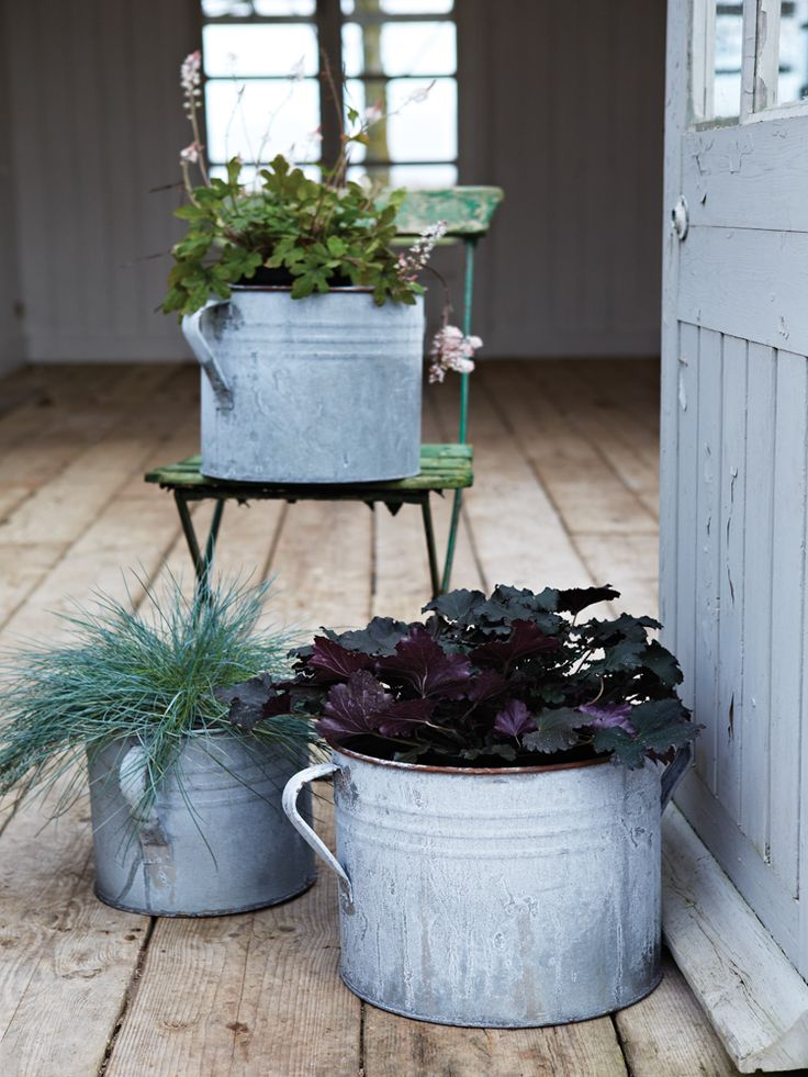 Three Aged Zinc Planters - Outdoor Living