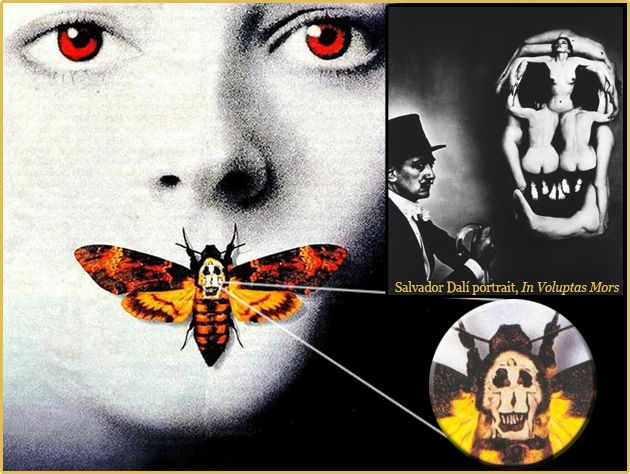 salvador dali portrait in voluptas mors skull in the deaths head moth the silence of the. Black Bedroom Furniture Sets. Home Design Ideas