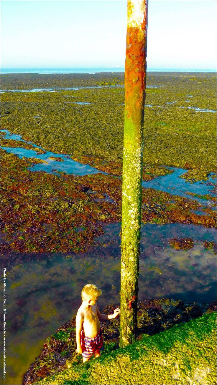 INGHILTERRA – CLIFTONVILLE – BASSA MAREA. Bassa marea del Mare del Nord.