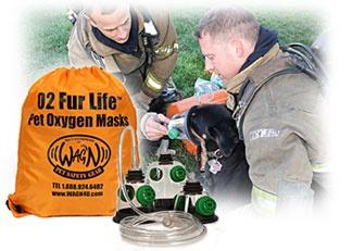 Pet oxygen mask