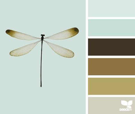 dragonfly hues