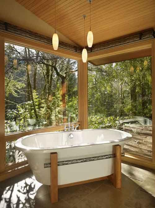 cristalera, bañoa abierto al exterior y vegetación exterior, madera en el techo