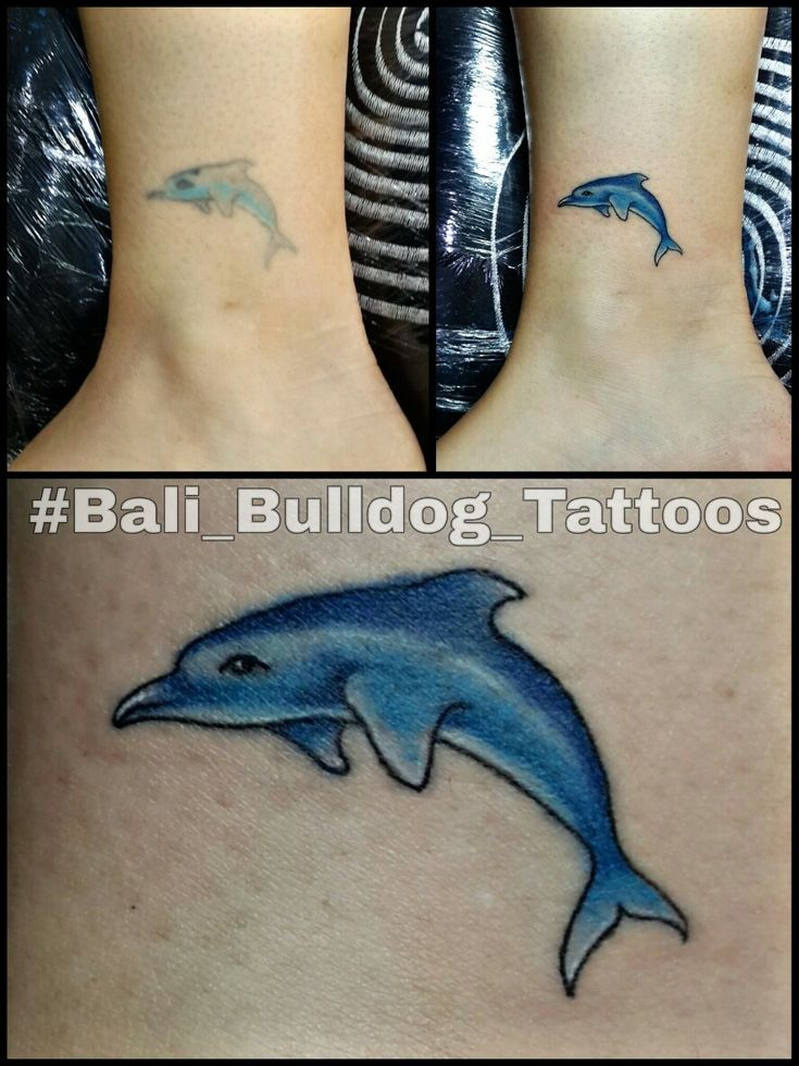 #touch_up_Tattoo #Dolphine_Tattoo #Bali_Bulldog_Tattoos #Bali_Tattoo #Bali_Bulldog_Tattoo