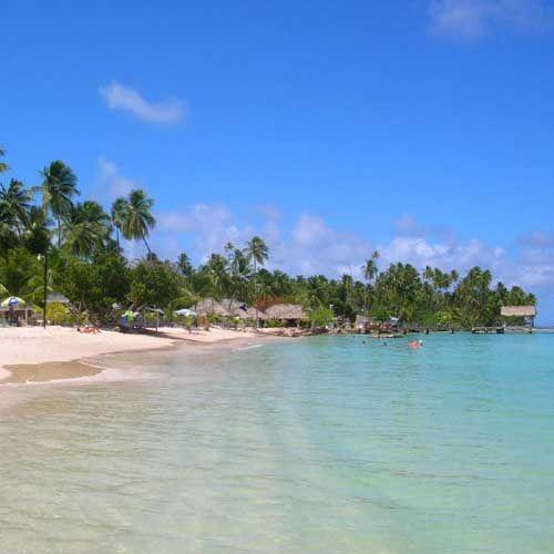 Tobago Island: 7 Best Tobago's Favorite Dishes Images On Pinterest