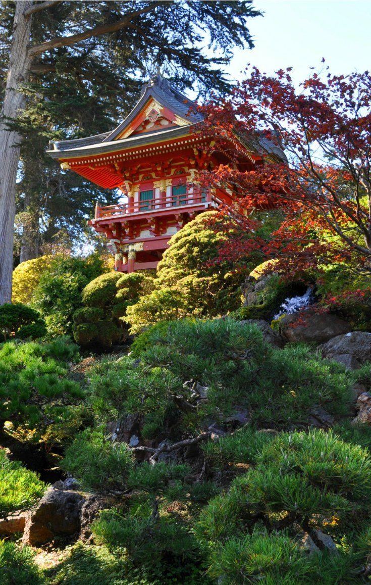 The beauty of San Francisco's Japanese Tea Garden.