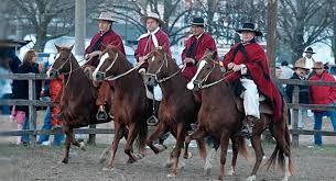 Caballos peruanos de paso, desfilan en Salta.