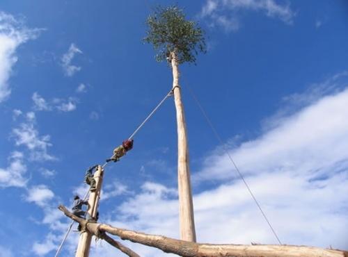 Traditional arboreal rites in Regional Park of Gallipoli Cognato Piccole Dolomiti Lucane, Basilicata, Italy.