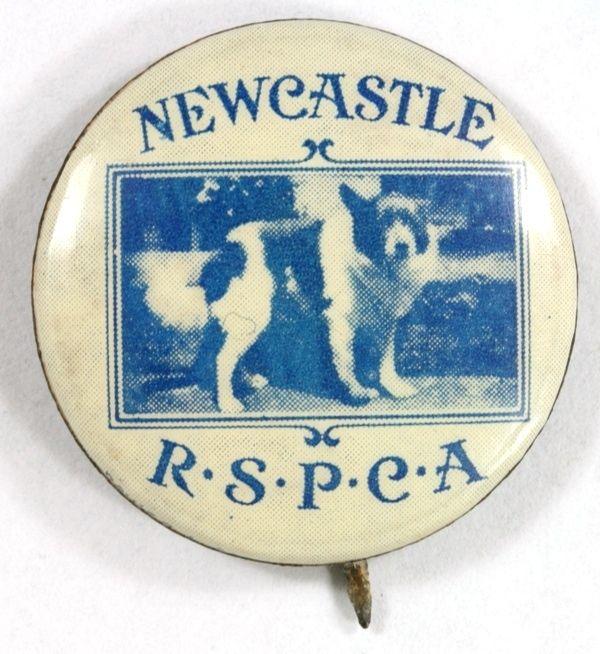 Newcastle RSPCA