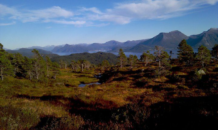 "From ""Sulafjellet"""