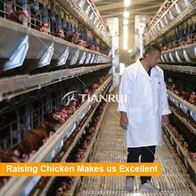 http://www.farmingport.com  manager@farmingport.com   +8618561818859  chicken cage,poultry farm equipment,poultry equipment,equipments for poultry farms,cages laying hens,farm chicken eggs,chicken house,poultry farm cage,battery cages laying hens,battery cages laying hens sell in algeria,battery hen,chicken cage for sale,types of poultry house,poultry farm,chicken farms of germany,cages laying hens used,farm equipment,laying hens cage,chicken layer cage,poultry farm house design,cages for…