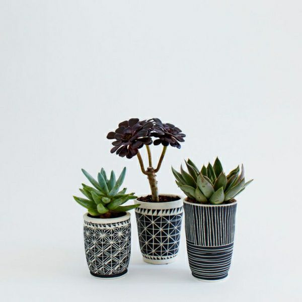 Cute Black And White Patterned Planters For Small Indoor Plants