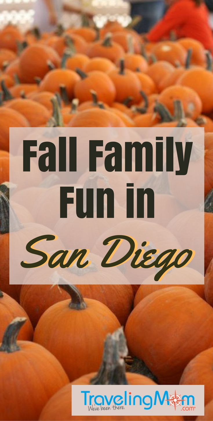 9 fun fall family activities in san diego - Best Halloween Celebrations