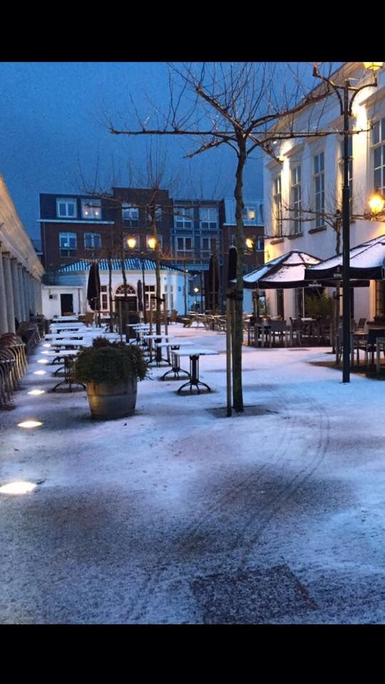 Korenbeurs in de sneeuw