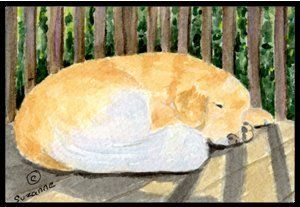 Golden Retriever Indoor / Outdoor Floor MAT 18 X 27 Inches by Caroline's Treasures. $26.99. INDOOR / OUTDOOR FLOOR MAT This is available in either 18 inch by 27 inch Action Back Felt Floor Mat / Carpet / Rug that is Made and Printed in the USA. A Black binding tape is sewn around the mat for durability and to nicely frame the artwork. The mat has been permenantly dyed for moderate traffic and can be placed inside or out (only under a covered space). Durable and fad...
