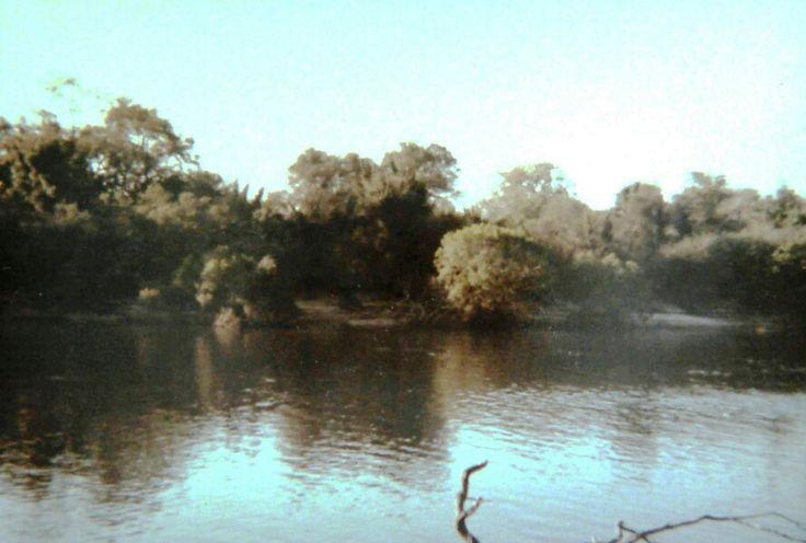 Island in Zambezi. Romeo Bravo. Op.