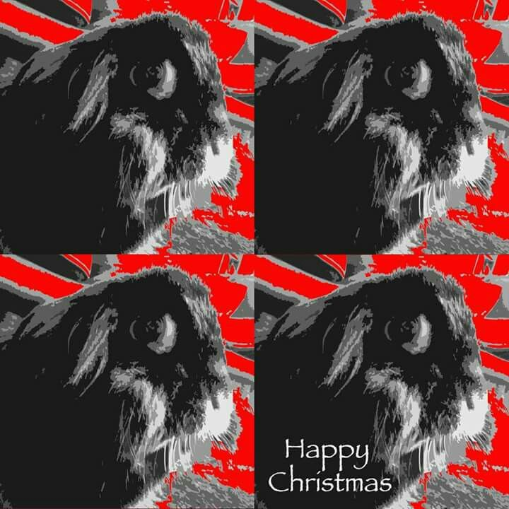 Christmas card design 2014