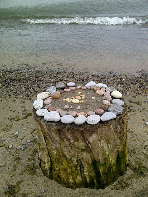Found on the west beach in Cobourg