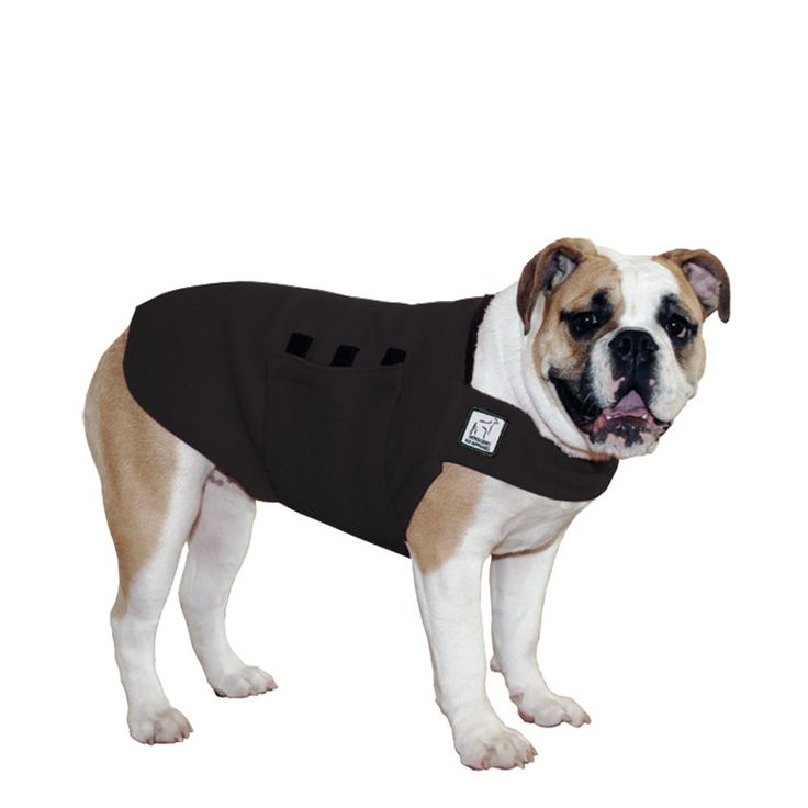 Black English Bulldog Dog Tummy Warmer, great for warmth, anxiety and laying with our dog rain coat. High performance material. Made in the USA.
