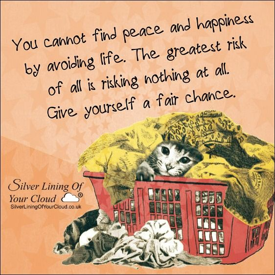 You cannot find peace and happiness by avoiding life. The greatest risk of all is risking nothing at all. Give yourself a fair chance. ..._More fantastic quotes on: https://www.facebook.com/SilverLiningOfYourCloud  _Follow my Quote Blog on: http://silverliningofyourcloud.wordpress.com/