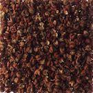 山椒 ∥ どんな風に使われますか? 実や葉は叩いて潰したり、ちぎったりすると強い香りが得られます。 七味唐辛子には欠かせないスパイスの一つです。特にパウダー状の粉山椒はうなぎの蒲焼へのトッピングに不可欠です。 初夏に出回る青い実は、ちりめん山椒、佃煮、煮魚加えます。サッと湯通ししてから冷凍すれば青いまま保存できます。 お吸い物や味噌汁等に最後にひとつまみぱっと散らすと、爽やかな香味が広がります。 煮魚や佃煮に粒のまま加えてください。 うなぎの蒲焼に不可欠なように、魚の生臭みやあぶらっぽさを和らげる効果があります。特に川魚に効果的です。 浅漬け、ピクルス、マリネ等の香り付けに。 うどんやそば等麺類の香り付けに。 照り焼き、焼き鳥など焼き物、お吸い物、丼もの、麺類、焼きそば、塩ラーメンに。 小麦せんべい、味噌せんべい等の和風の焼菓子の香りつけに。切り山椒は求肥に山椒の風味を加えた季節のお菓子。