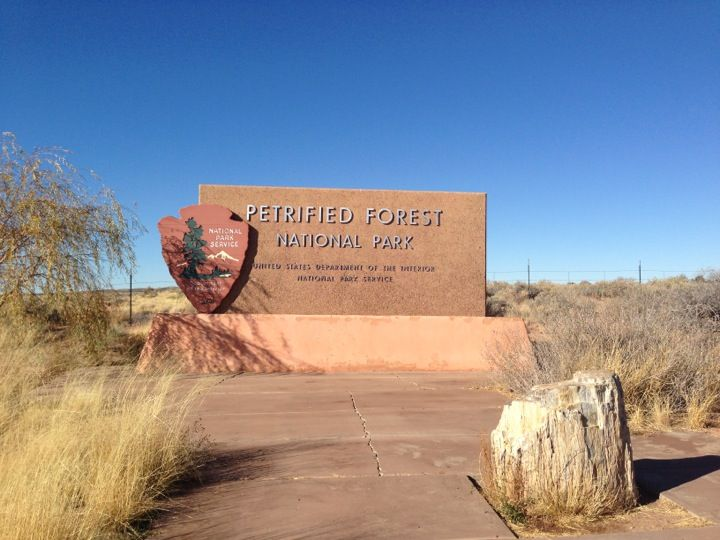 Petrified Forest National Park in Petrified Forest, AZ. Named for its large deposits of petrified wood, it  covers about 146 square miles, encompassing semi-desert shrub steppe as well as highly eroded and colorful badlands.  Find more info @ Bring a hammock to hang with @ http://hammocktown.com/