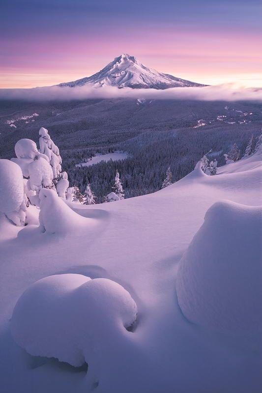 Winter Bliss --- Mt. Hood, Oregon, USA #snow white landscape nature sunset mountain