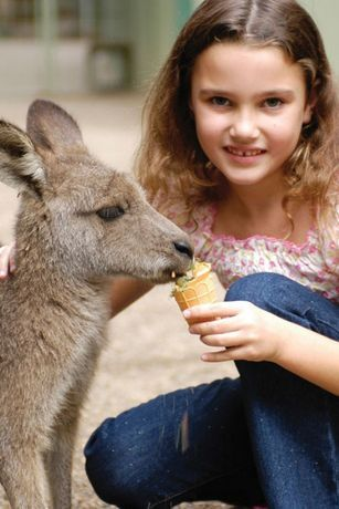 children australia wild life - Sök på Google