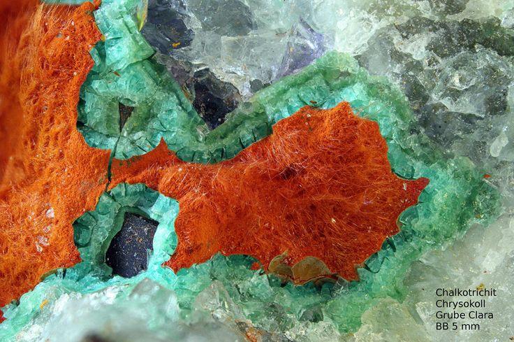 Chalkotrichit Chryskoll   Clara Mine, Rankach valley, Oberwolfach, Wolfach, Black Forest, Baden-Württemberg, Germany Copyright © Stoya