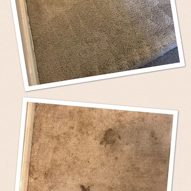 #mrhandyman3379  Introducing our new skill .. deep and professional carpet cleaning #carpetcleaning #beforeandafter #handyman #removingstains #westhouston #clean