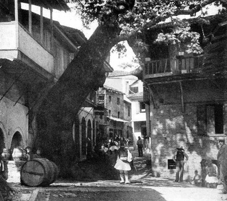 Ανδρίτσαινα, 1922, η Τρανή Βρύση με τον πλάτανο