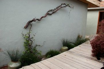 Brilliant and original! Mount branch then grow a vine up it.  Amazing!    Gardens By Gabriel's Design, Pictures, Remodel, Decor and Ideas - page 4
