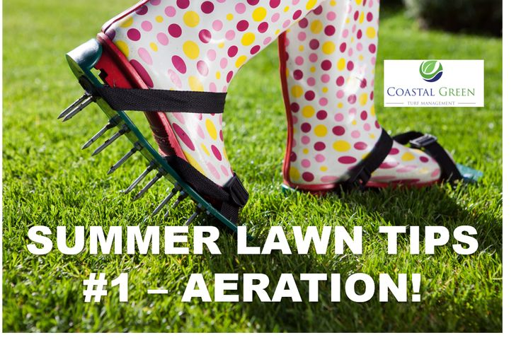Aerify to relieve soil compaction if your lawn is old or