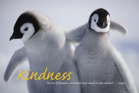Vriendelijkheid is heel belangrijk. Ik probeer altijd vriendelijk te doen tegen iedereen, maar als ik eens een slechte dag heb dan kan het zijn dat ik wat minder vriendelijk doe tegen anderen. Zelf heb ik ook graag dat anderen vriendelijk zijn tegen mij.