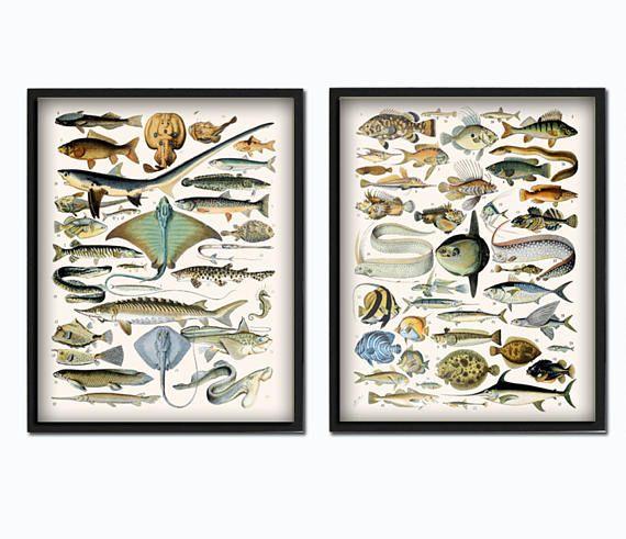 Die besten 25+ Fisch Wand Kunst Ideen auf Pinterest Holz-Fisch