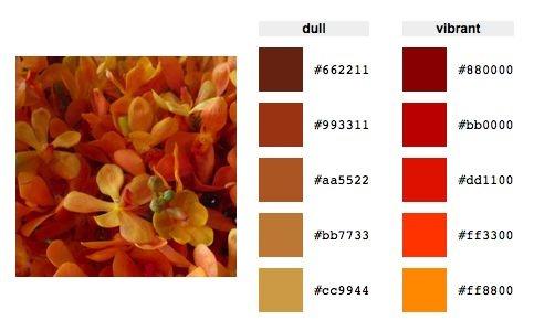 Burnt orange color palette color palettes pinterest - Burnt orange color scheme ...