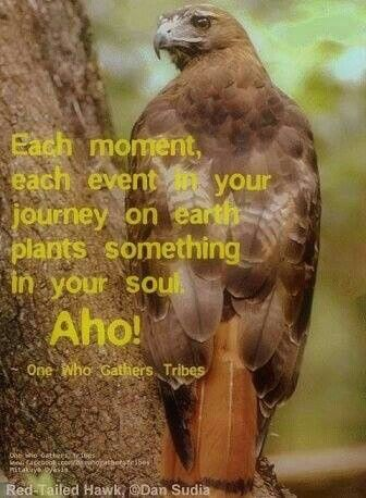 Each moment, each event in your journey on earth plants something in your soul. Aho!