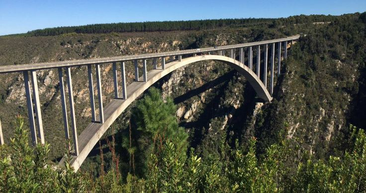 On the Garden Route: Bungee Jump at Tsitsikamma National Park. Ready to Face your Fear?